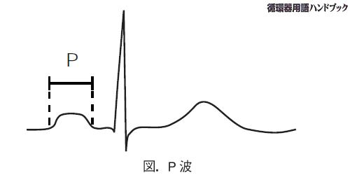 P 波 陰性